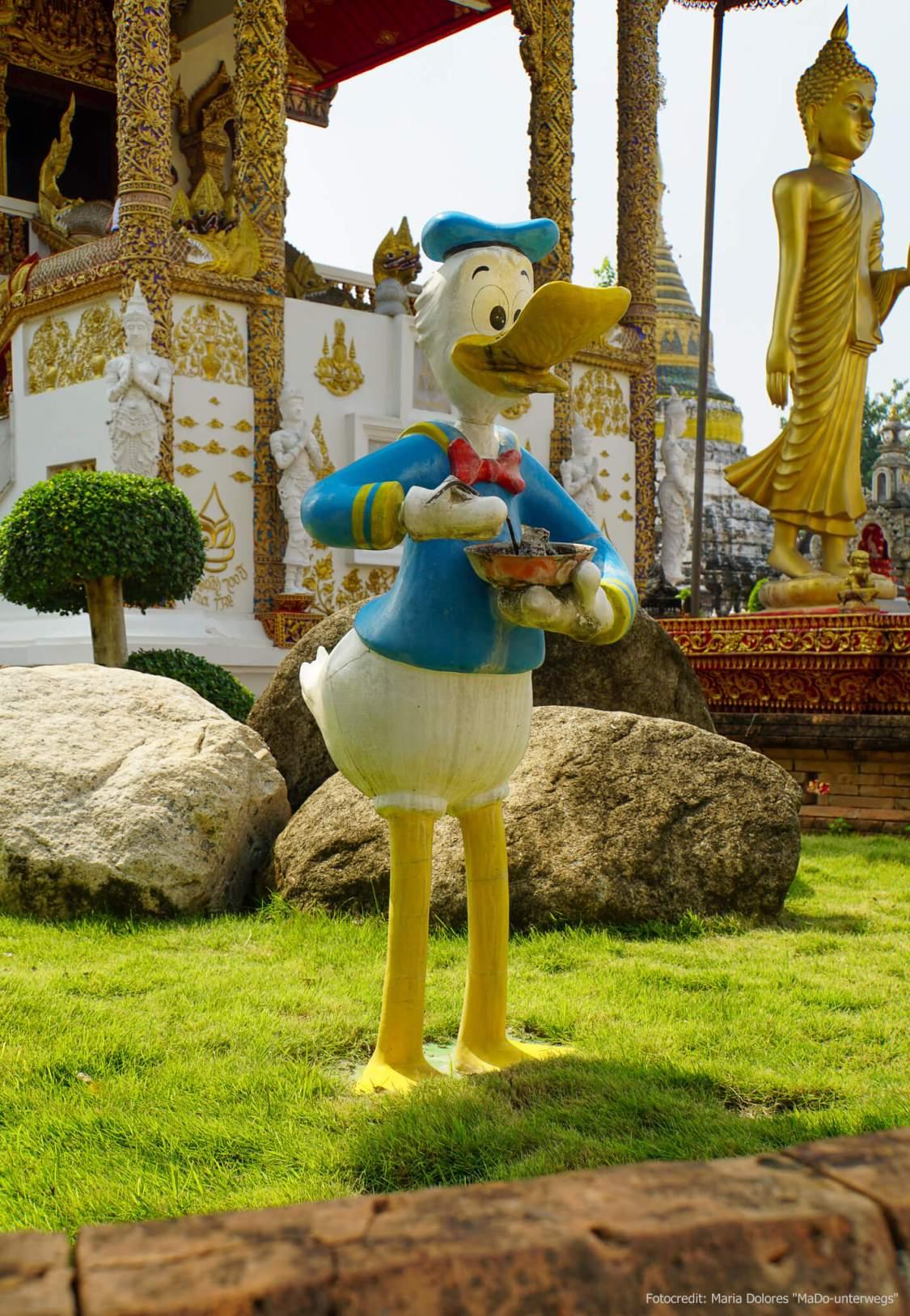 Donald Duck im Garten des Wat Buppharam in Chiang Mai entdeckt (Reisetagebuch «Thailand als Alleinreisende ohne Roller entdecken»)