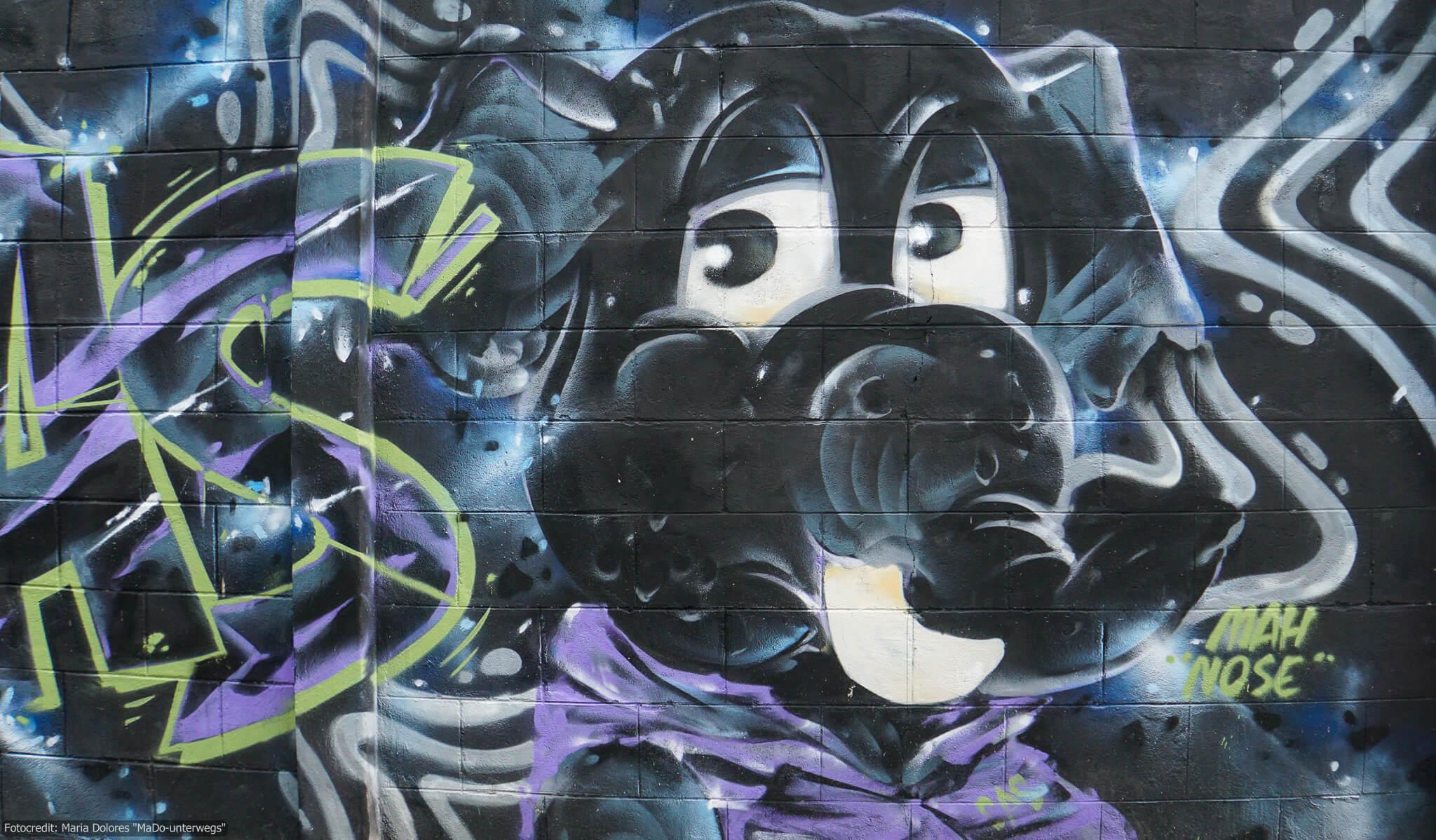 """Street-Art in Chiang Mai """"Hundekopf mit Schlappohren"""" (Reisetagebuch «Thailand als Alleinreisende ohne Roller entdecken»)"""