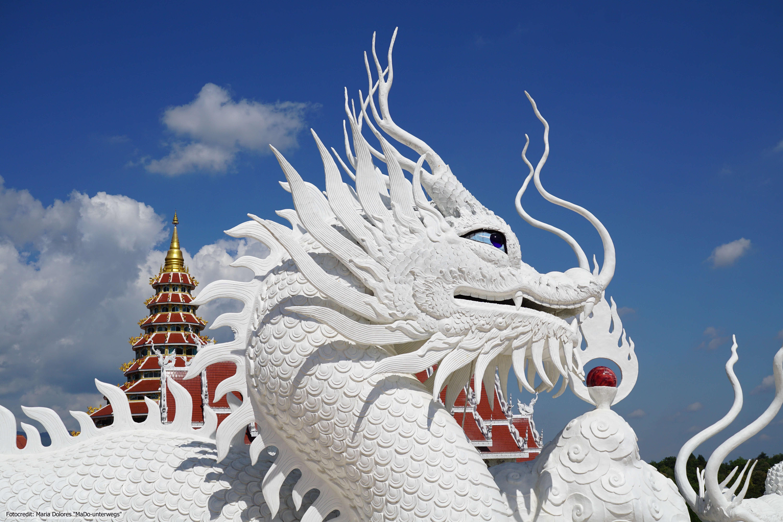 Wat Huay Pla Kang in Chiang Rai - Chedi und Drachen (Reisetagebuch «Thailand als Alleinreisende ohne Roller entdecken»)