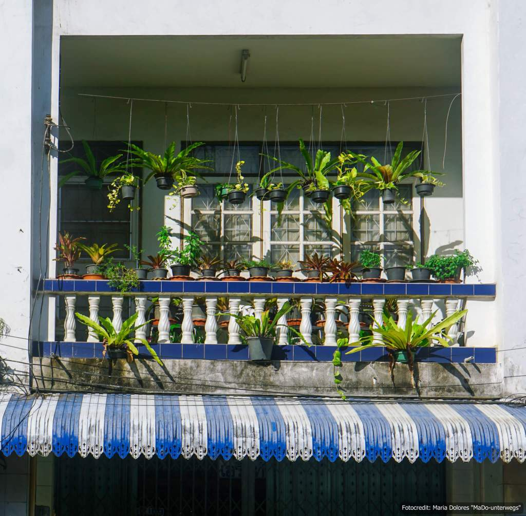 Balkon mit Pflanzen in Phuket Town (Reisetagebuch «Thailand als Alleinreisende ohne Roller entdecken»)