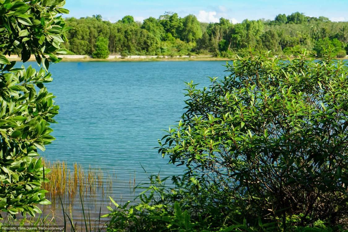 Süßwassersee auf Ko Chang Ranong (Reisetagebuch «Thailand als Alleinreisende ohne Roller entdecken»)