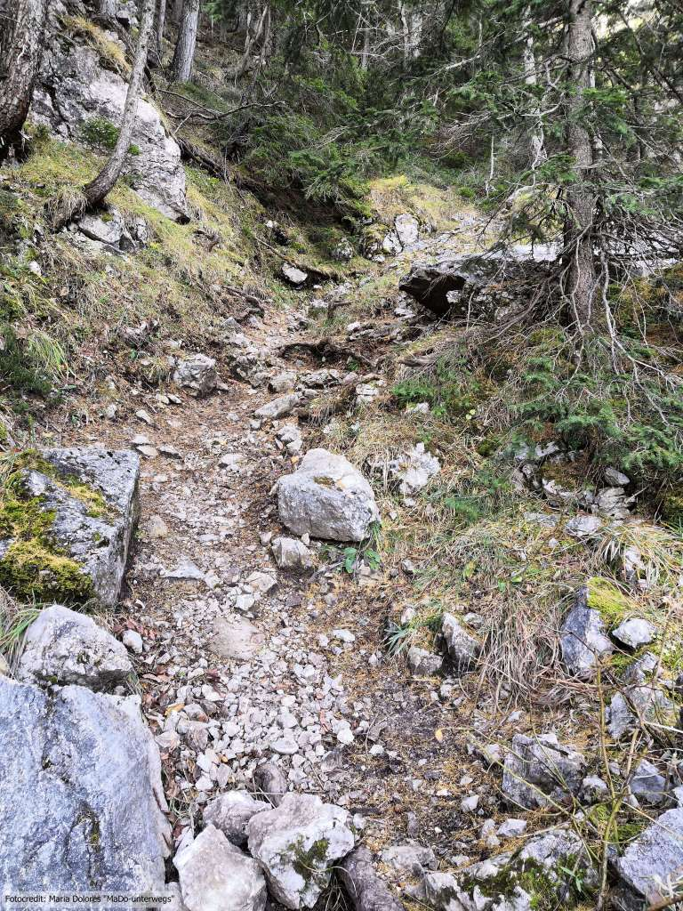 Wanderung am Schneeberg: Wanderpfad