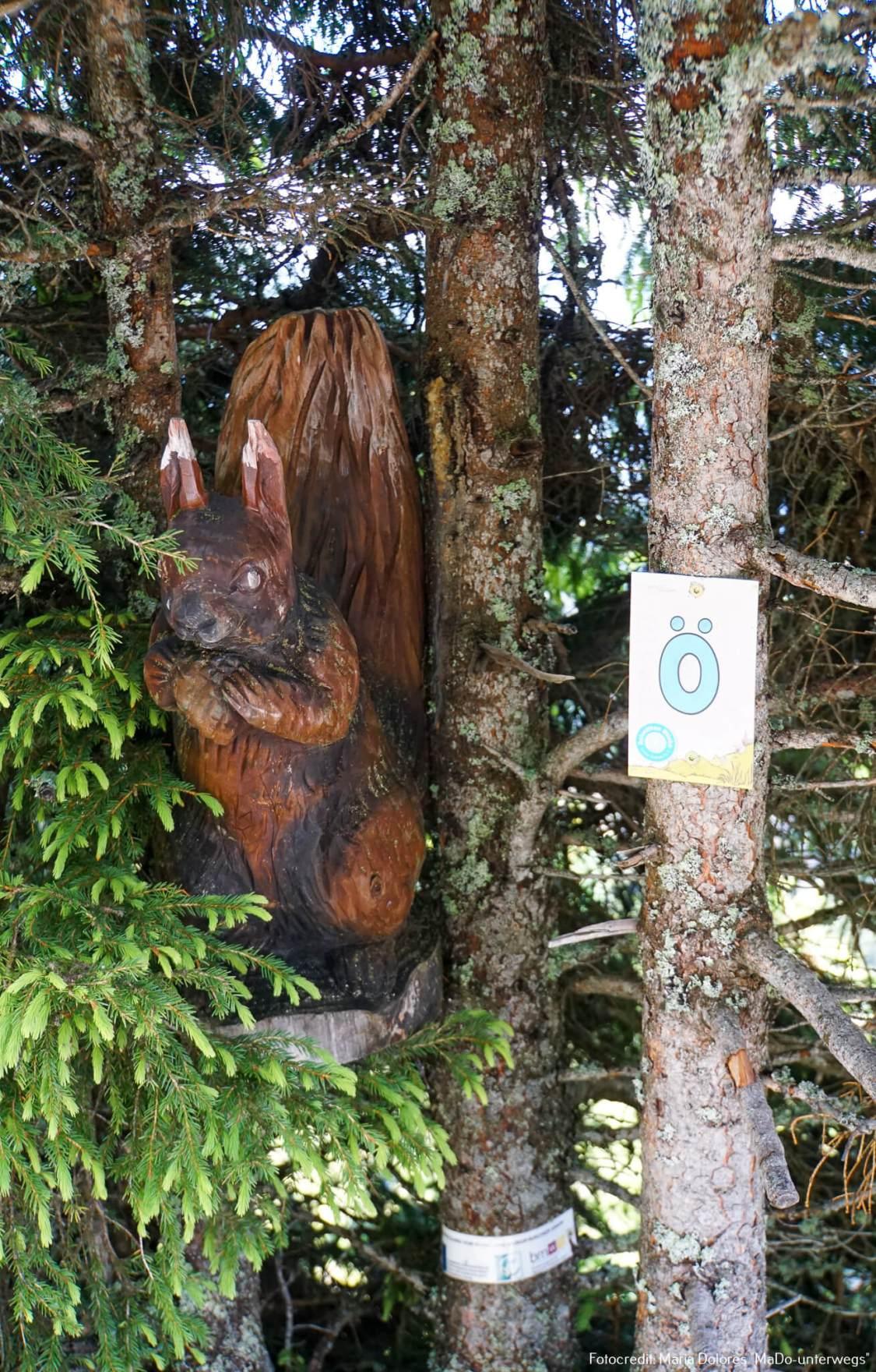 Rätselaufgabe am Erlebnisweg Höhenpromande – Schmittenhöhe_Zell am See [10 Tage Roadtrip Salzburg]