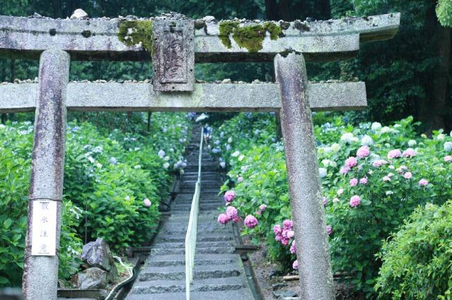 吉備津神社岩山宮