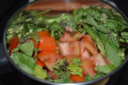 Tomato and Mint leaves