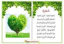 Photo of محفوظات شجرة