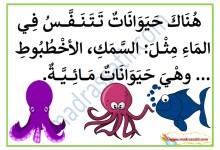 Photo of معلقات التنفس عند الانسان و الحيوان