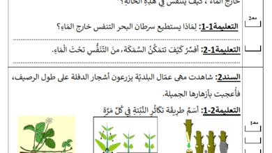 Photo of تقييم في مادة الايقاظ العلمي السنة الرابعة