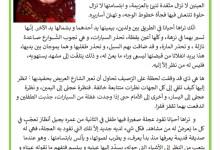 Photo of نص الجدة و احفادها – وصف الجدة