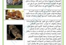 Photo of التغذية عند الحيوانات اللاحمة والعاشبة