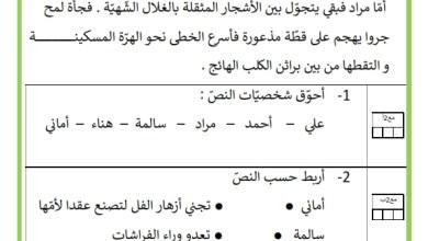 Photo of تقييم مكتسبات المتعلّمين في نهاية السداسي الثاني  مادة : القراءة  – السنة الاولى