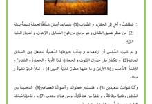 Photo of نص الموسم الكبير – وصف موسم الحصاد التقليدي