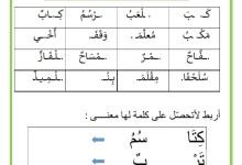 Photo of المراجعة اليومية للحروف ( الملف رقم 6 ) : حرف التاء – تلاميذ السنة الأولى