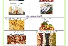Photo of مصادر الأغذية –  التغذية السليمة