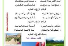 Photo of التربية الموسيقية : فداك الرّوح يا خضراء