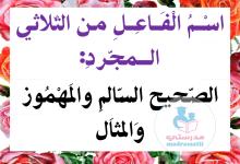 Photo of اسم الفاعل  قواعد لغة معلقات للسنة الخامسة