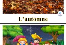 Photo of affichage 3 ème année – les 4 saisons