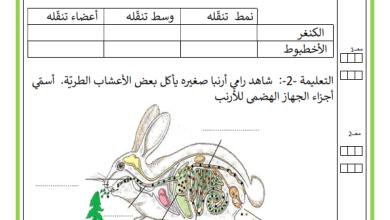 Photo of امتحان ايقاظ علمي السنة الرابعة الثلاثي 2