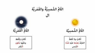 Photo of اللاّم الشمسية و اللّام القمرية