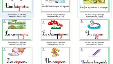 Photo of Affichage de classe des mots avec gn