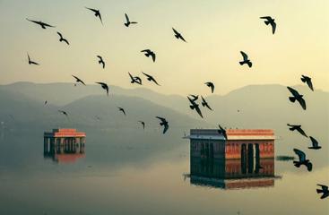 Terra Di Colori- Rajasthan Itinerary