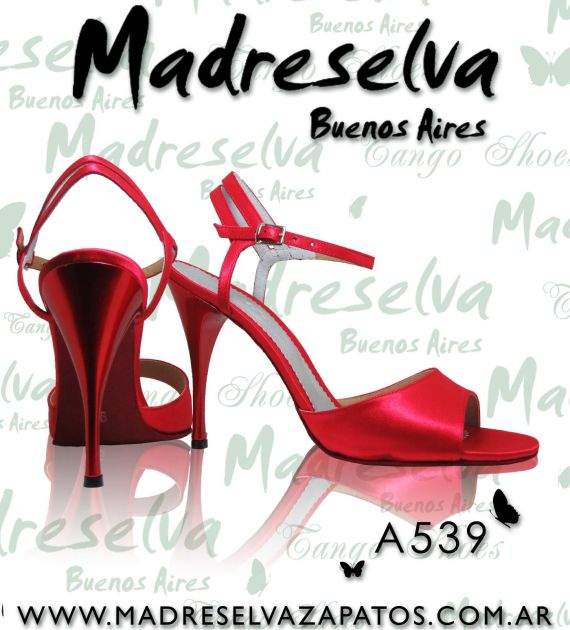 Zapatos de Tango A539