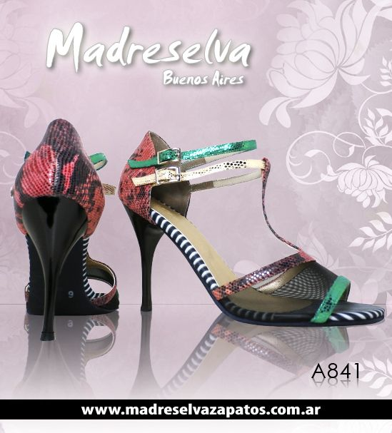 Zapatos de Tango A841
