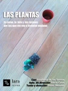 las-plantas-web-lara