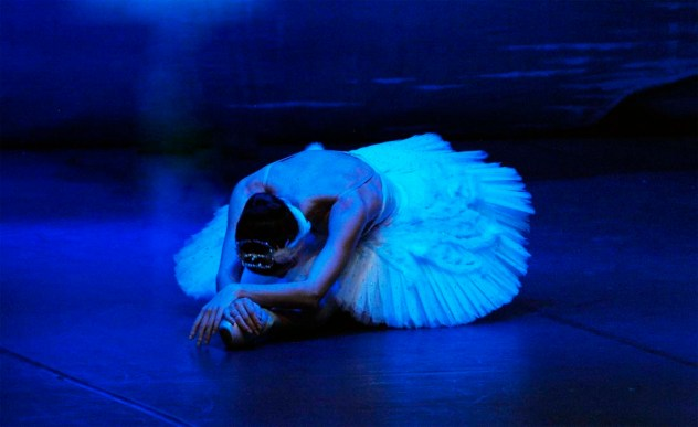 EL LAGO DE LOS CISNES - Ballet de San Petersburgo en el Teatro de la luz Philips Gran Vía