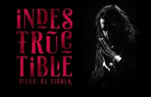 DIEGO EL CIGALA en el Nuevo Teatro Alcalá