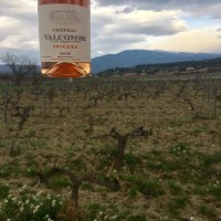 Chateau Valcombe 2016 Rosé