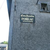 Day 3 – Foreau sign