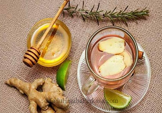 Manfaat Bawang putih Tunggal Jahe Merah Lemon Cuka Apel Madu