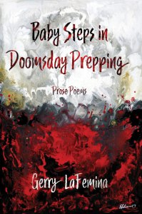 Baby Steps in Doomsday Prepping by Gerry LaFemina