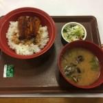 【錦糸町】すき家 錦糸公園前店、栄養豊富なうなぎを安く食べたいなら、すき家のうな丼でしょう。