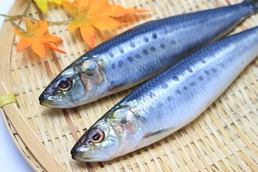 魚を食べて長寿