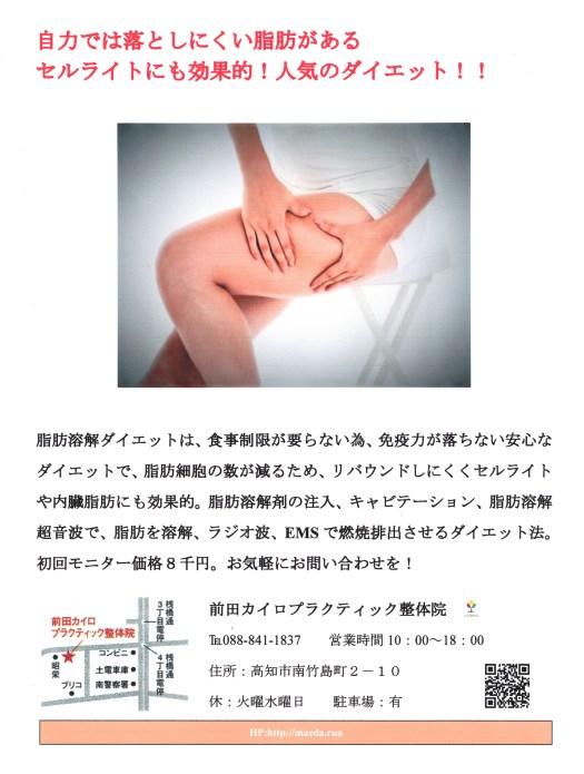 脂肪溶解ダイエット(ノンニードル・メソセラピー)