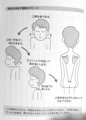 背筋伸ばし運動
