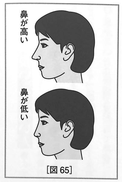 図65 鼻の高さ の基準 人相学の完全独習 第二章