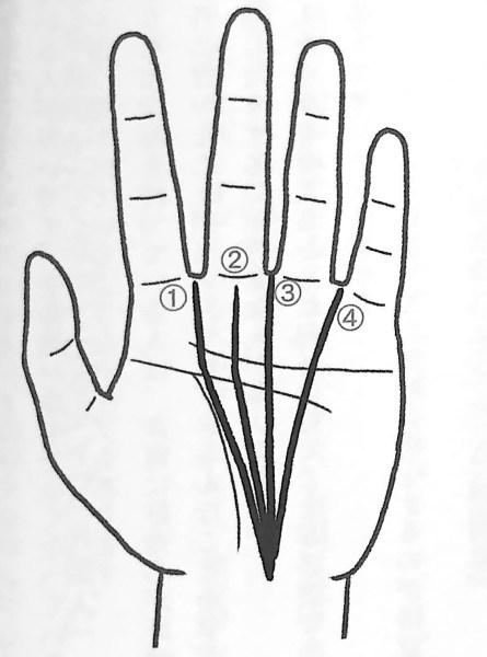 図7 運命線の4つのパターン 手だけで本性がわかる 第4章