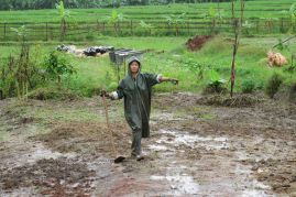 nok in the wet season 2011
