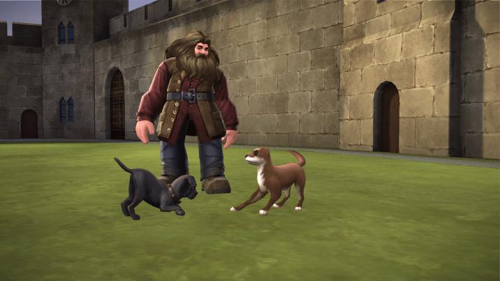 Hogwarts Mystery Animagus 3