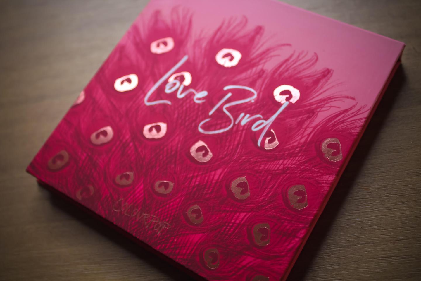 Review & Swatches of the ColourPop 9-Pan Shadow Palettes (Part 2) 27