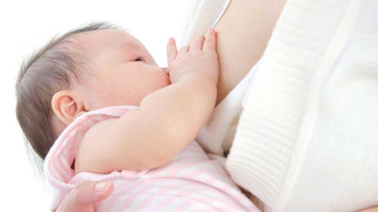 Leite materno é o principal alimento do bebê