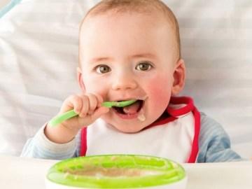 comida para bebê de 1 ano