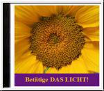 Betätige das Licht. Licht-Meditationen