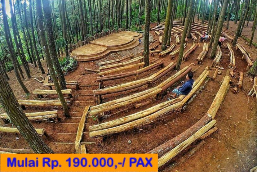 One Day Trip Weekday Yogyakarta Hutan Pinus