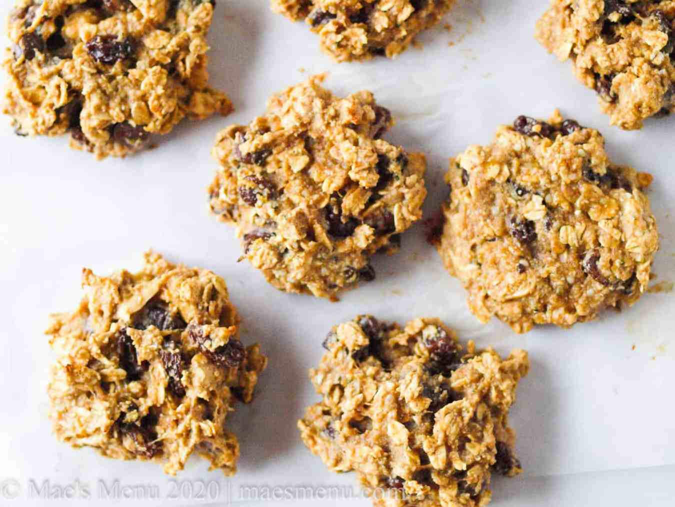 oat protein cookies on a white background.