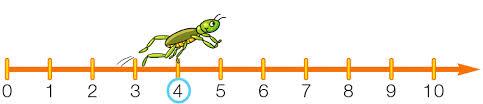 linea dei numeri
