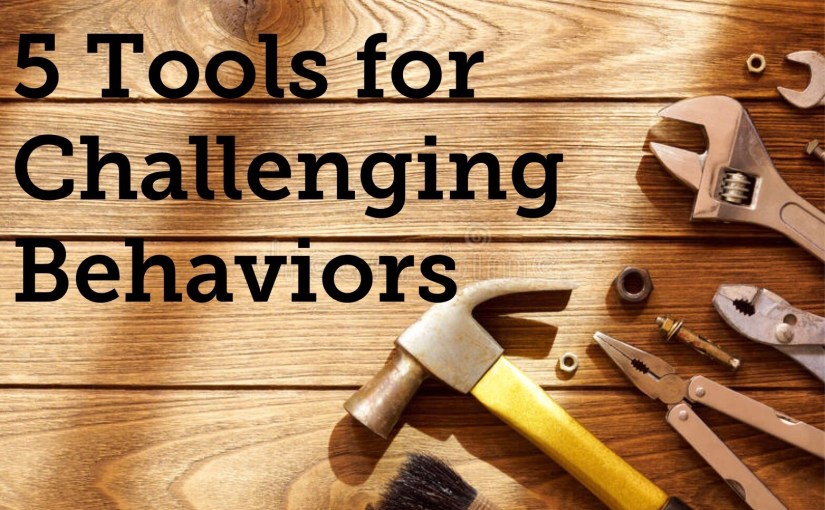 5 Tools for Addressing Challenging Behaviors